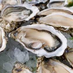 12 huîtres creuses ouvertes calibre 4 - Uniquement secteur Vannes/Auray