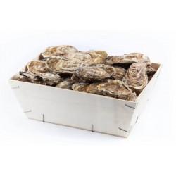 Bourriche 4 douzaines huîtres creuses calibre 4 - Uniquement secteur Vannes/Auray