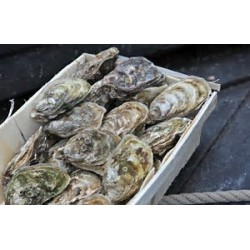 Bourriche 8 douzaines calibre 2 - huîtres creuses - Uniquement secteur Vannes/Auray