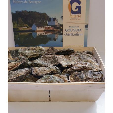 100 huîtres creuses bretonnes calibre 5 - Expédition France