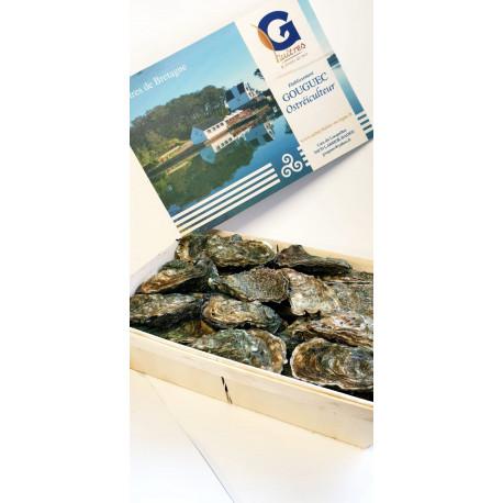 25 huîtres creuses calibre 3